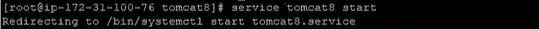 Start the server