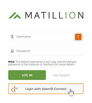 Matillion ETL login screen with OpenID